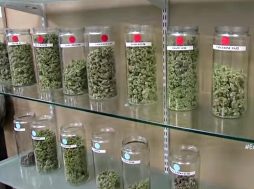 Continúa análisis sobre el consumo de marihuana