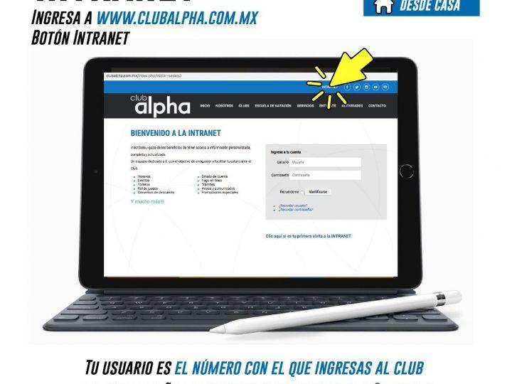Ofrece Club alpha asesorías deportivas digitales a sus usuarios